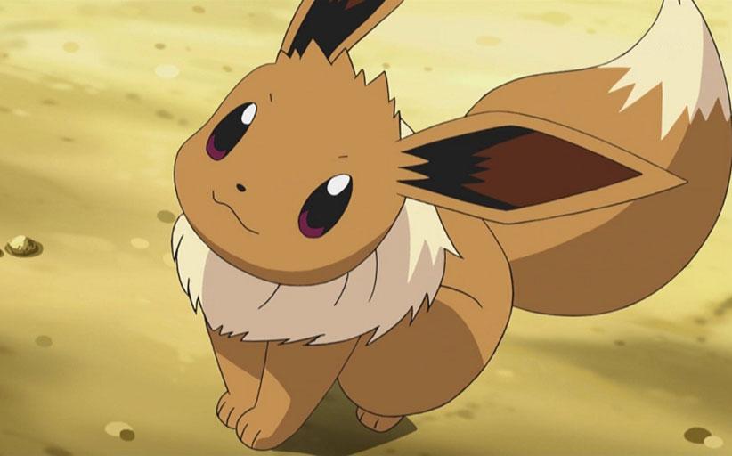 Pokemon ditto breeding eevee